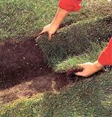 восстановление газона после прокладывания кабеля
