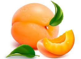 описание сортов персика