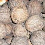Как правильно высушить грецкие орехи