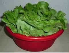 как хранить зеленые овощи
