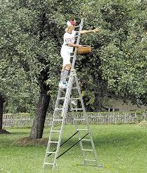 лестница для сбора урожая