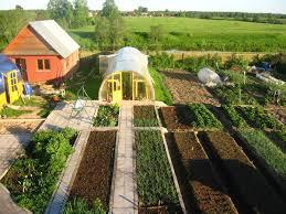 Какие новации обещают садоводам и огородникам