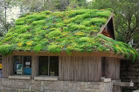 геотекстиль для крыши
