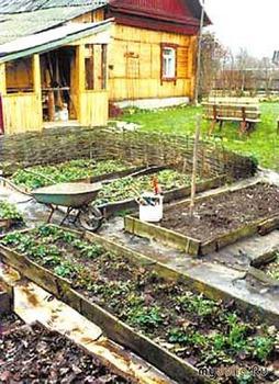 Медведев предлагает принять новый закон о садоводах