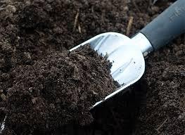 Как правильно выбрать плодородный грунт для дачного участка